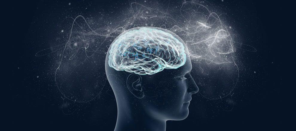 The Magic of Neuroscience