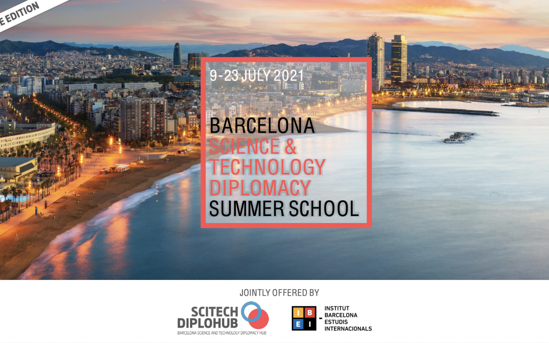 'Science and Technology Diplomacy Summer School'